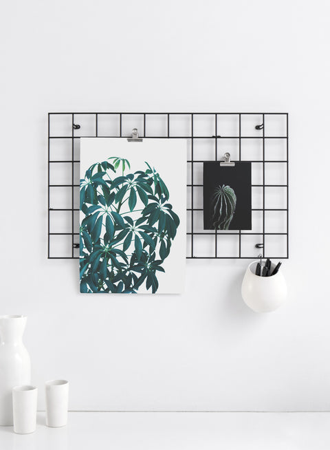 Modern minimalist Comfort print by Opposite Wall with botanical photography - Kitchen