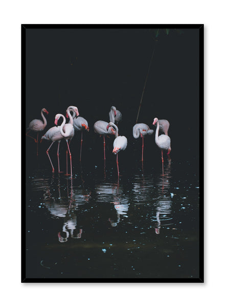 Modern minimalist poster by Opposite Wall with Flamingos