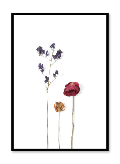 Scandinavian art photo print by Opposite Wall with dried flowers