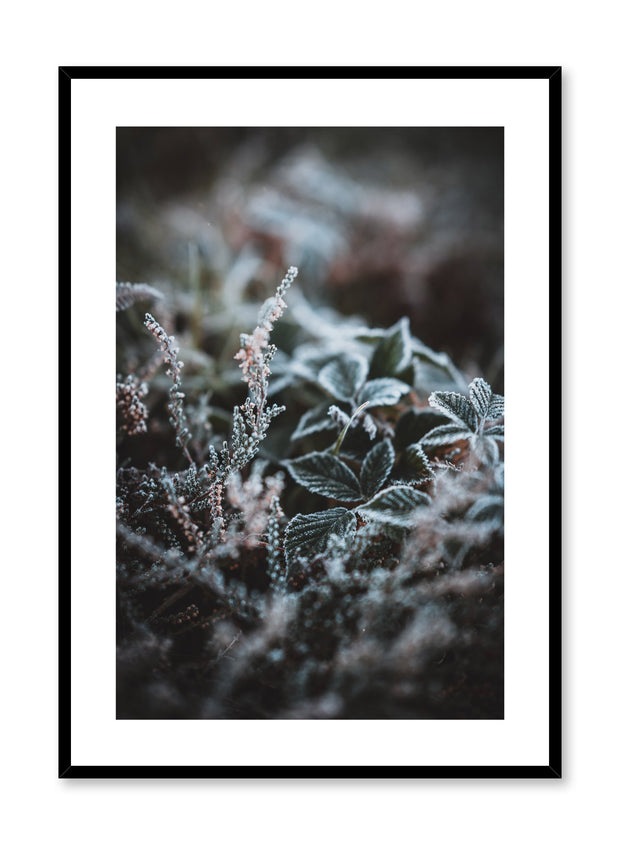 Scandinavian art print by Opposite Wall with winter flower art photo
