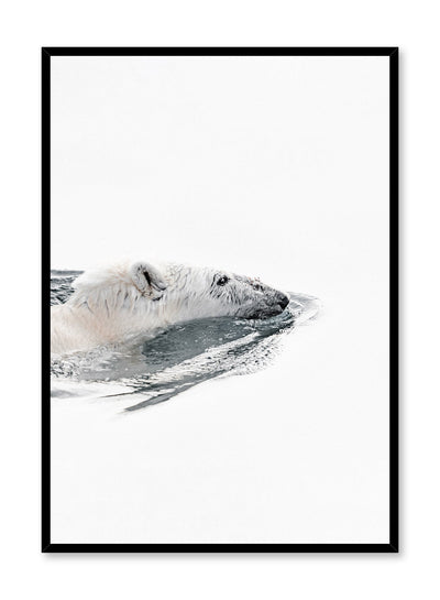 Modern minimalist kids poster for children's room, featuring photography of polar bear swimming. Available at Opposite Wall