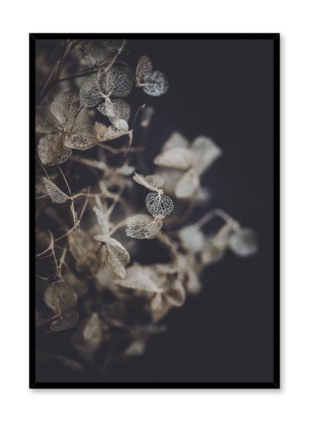 Minimalist design poster by Opposite Wall with Hydrangea photography