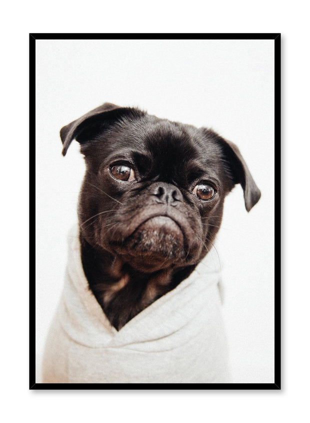 Modern minimalist photo print of a pug dog by Opposite Wall