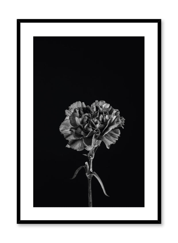 Modern minimalist poster by Opposite Wall with trendy black floral photography