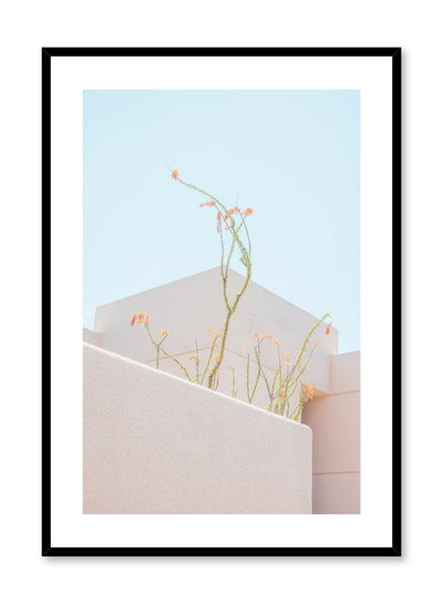 Minimalist design poster by Opposite Wall with landscape photography of feathery plants in rooftop