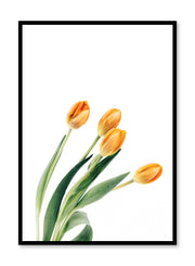 Minimalist wall poster by Opposite Wall with orange tulips bouquet floral photography