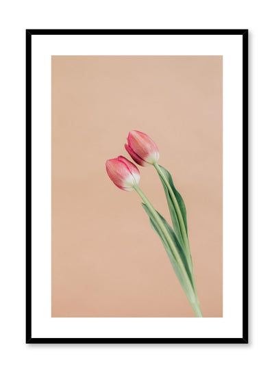 Minimalist wall poster by Opposite Wall with pink tulips floral photography