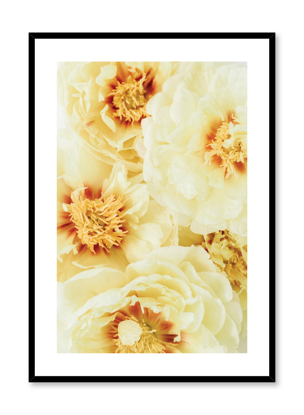 Minimalistic wall poster by Opposite Wall with yellow peonies Sunshine floral photography