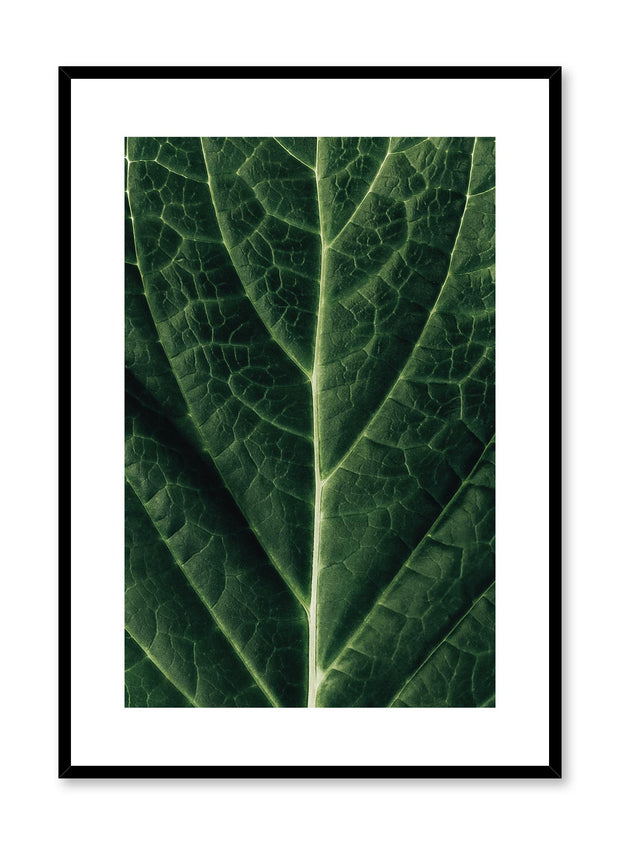 Minimalistic wall poster by Opposite Wall with detailed leaf photography