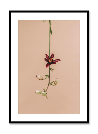 Minimalistic wall poster by Opposite Wall with Flower Drop floral photography