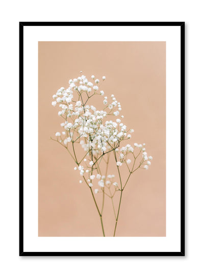 Minimalistic wall photography by Opposite Wall with Baby's Breath flower