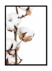 Minimalistic wall poster by Opposite Wall with cotton branch botanical photography