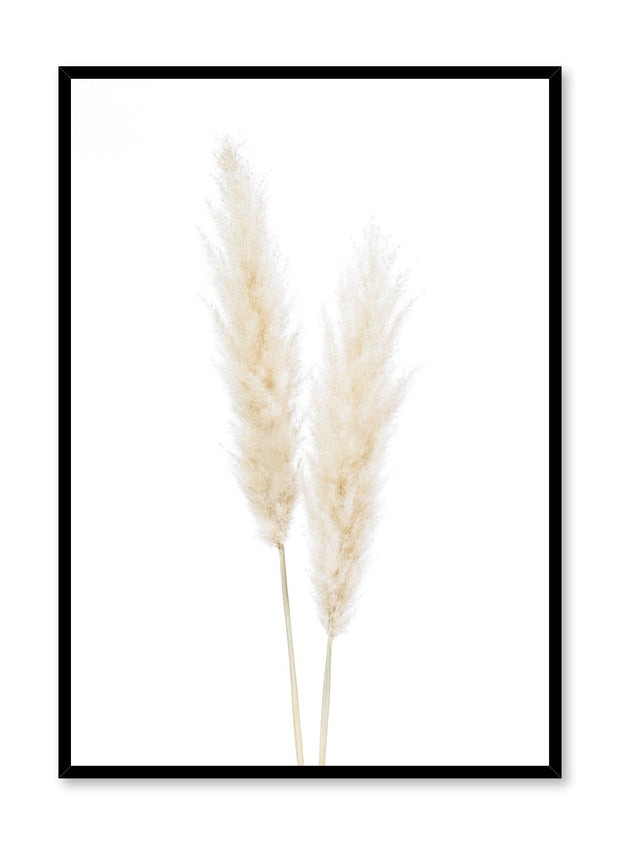 Minimalistic wall poster by Opposite Wall with grasses botanical photography