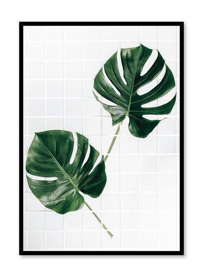Minimalistic wall poster by Opposite Wall with Monstera Deliciosa botanical photography