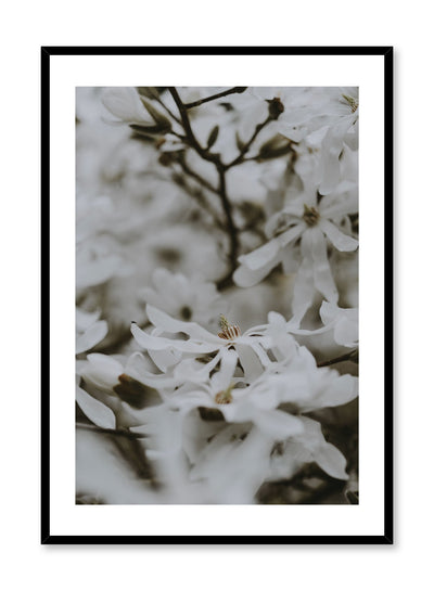 Minimalist design poster by Opposite Wall with bed of flowers photography