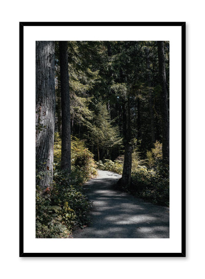 Minimalist design poster by Opposite Wall with nature photography of Vancouver Island Bright Days forest path