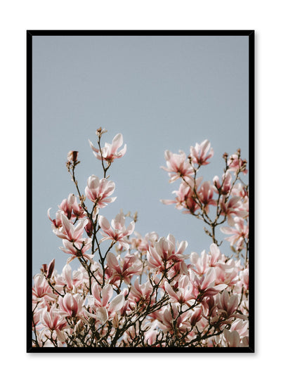 Minimalist design poster by Opposite Wall with Soaring Flowers floral photography