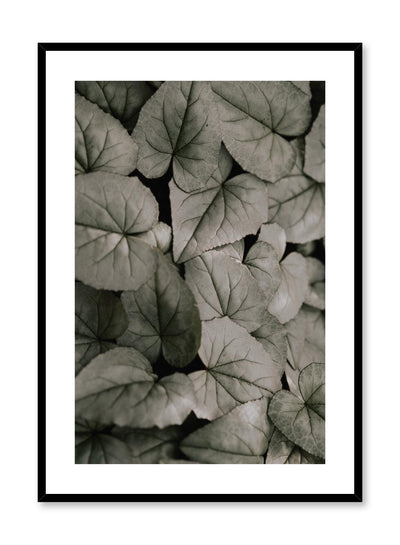 Minimalist design poster by Opposite Wall with muted leaves botanical photography