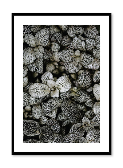 Minimalist design poster by Opposite Wall with patterned leaves botanical photography