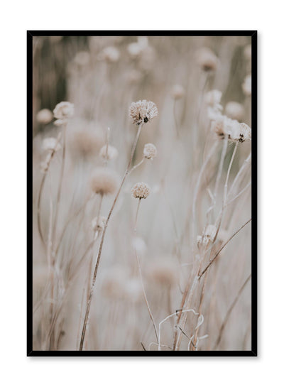 Minimalist design poster by Opposite Wall with Tall Stems botanical photography