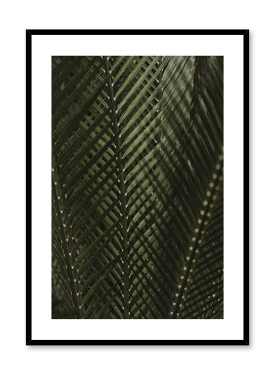 Minimalist design poster by Opposite Wall with Shadowy Ferns botanical photography