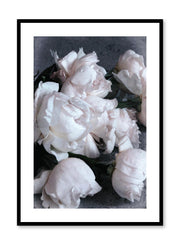 Minimalist design floral photography poster of Roses on Sand by Love Warriors Creative Studio - Buy at Opposite Wall
