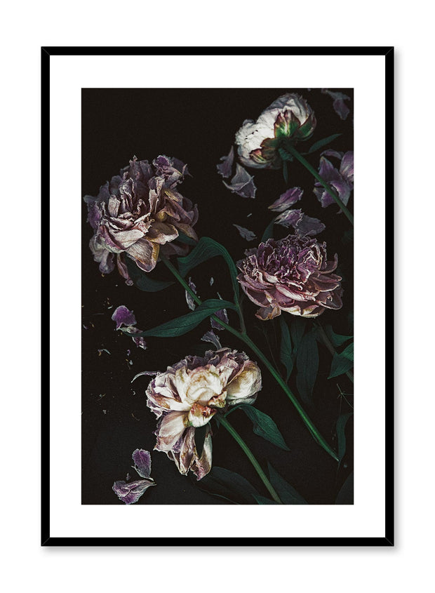 Minimalist design floral photography poster of Disintegration by Love Warriors Creative Studio - Buy at Opposite Wall