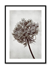 Minimalist design photography poster of black and white Towering Tree by Love Warriors Creative Studio - Buy at Opposite Wall