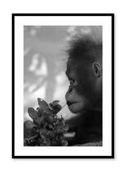 Minimalist design photography poster of black and white Hungry Monkey by Love Warriors Creative Studio - Buy at Opposite Wall