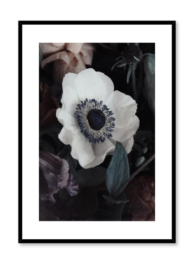 Minimalist design floral photography poster of White Flower by Love Warriors Creative Studio - Buy at Opposite Wall