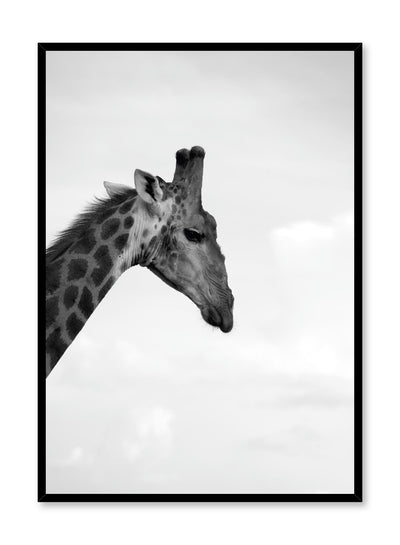 Minimalist design poster by Opposite Wall with black and white animal photography of Giraffe