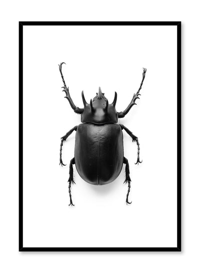 Minimalist design poster by Opposite Wall with black and white animal photography of Black Beetle Coleoptera