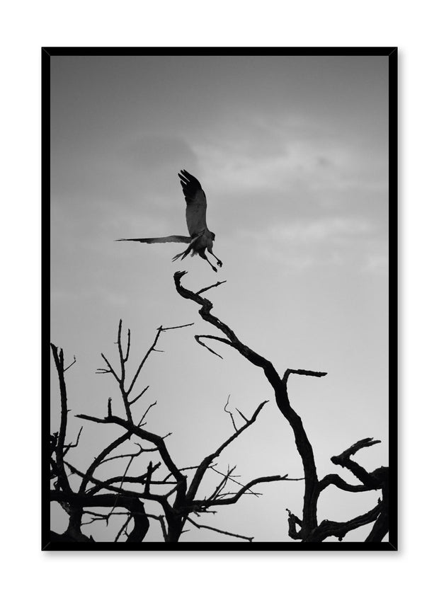 Minimalist design poster by Opposite Wall with black and white nature photography of Wild Thing