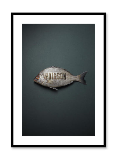 Minimalist poster by Opposite Wall with Poisson fish photography