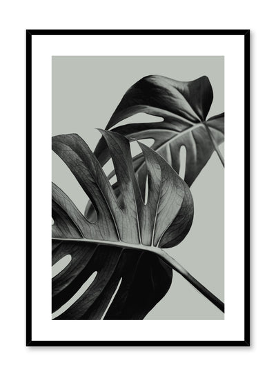Scandinavian poster by Opposite Wall with trendy with Monstera leaf Overlap in green colour