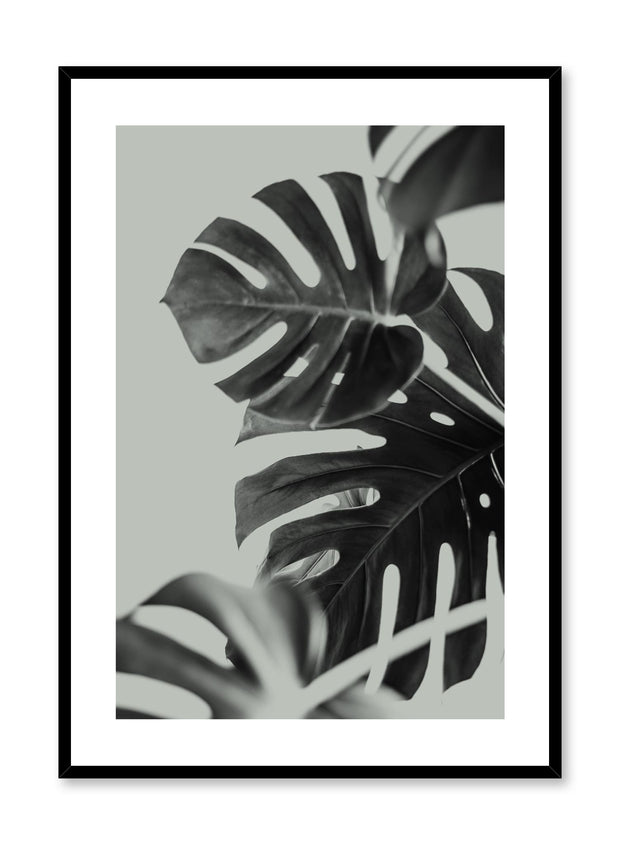 Modern minimalist art print by Opposite Wall with Monstera leaves art photo design in green