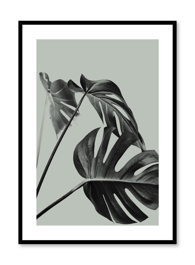 Scandinavian art print by Opposite Wall with with Monstera leaf photo Three's a charm in green