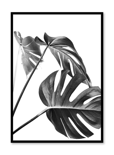 Scandinavian art print by Opposite Wall with with Monstera leaf photo Three's a charm in black and white