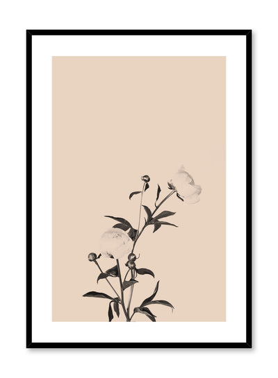 Scandinavian poster by Opposite Wall with trendy art photo of peonies - Romance in beige peach
