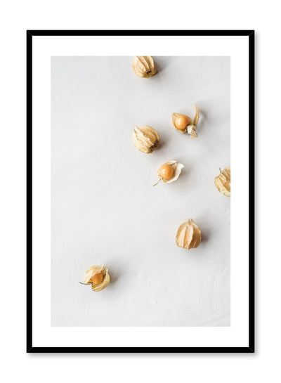 Minimalist poster by Opposite Wall with Ground Cherries food photography