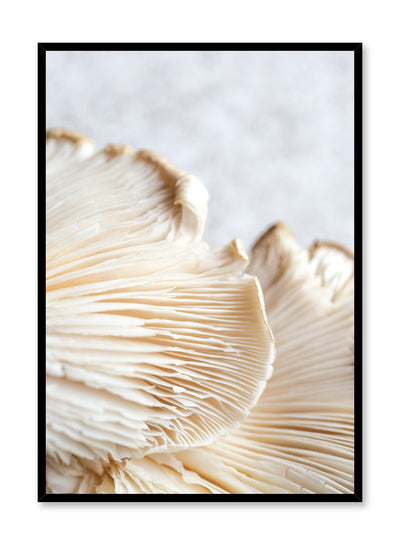 Minimalist poster by Opposite Wall with Mushroom Detail food photography