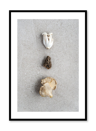 Scandinavian poster by Opposite Wall with trio of mushrooms food photography