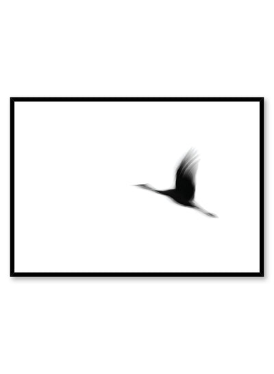 Modern minimalist photography by Opposite Wall with black and white photography of bird in flight