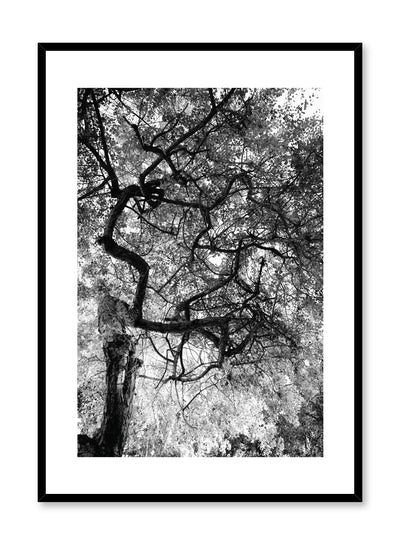 Modern minimalist poster by Opposite Wall with black and white photography of dense foliage