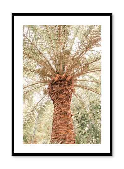 Modern nature photography poster by Opposite Wall with close up of palm tree