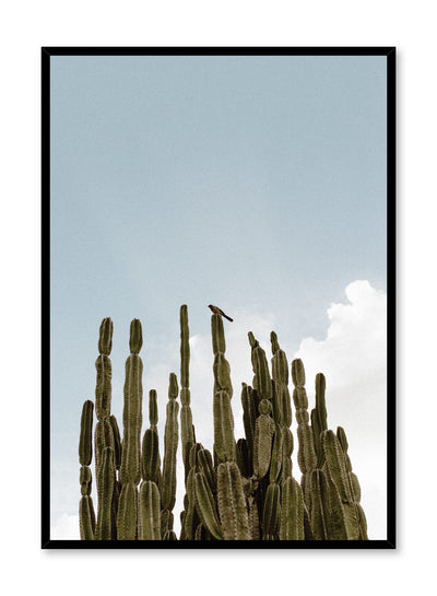 Modern minimalist photography by Opposite Wall with cactus plant against blue sky.