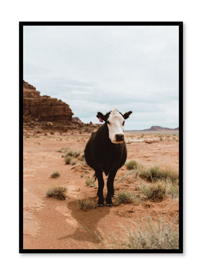 Modern photography poster by Opposite Wall with cow in the desert.