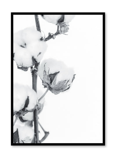 Minimalistic wall poster by Opposite Wall with cotton branch botanical photography in black and white