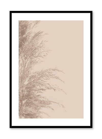 Minimalist wall poster by Opposite Wall with wispy grasses botanical photography in beige