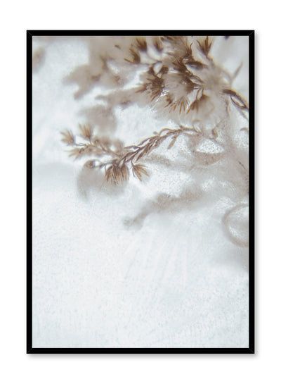 Modern minimalist botanical photography poster by Opposite Wall with Icy Petals